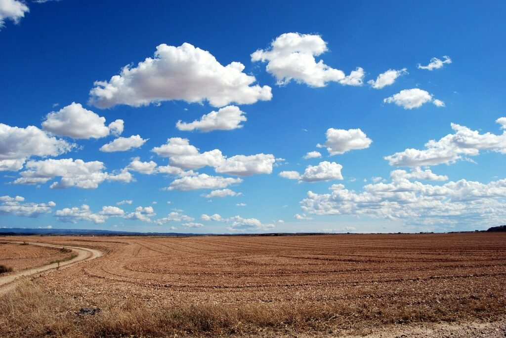 field, clouds, sky